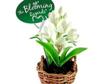 Miniature Polymer Clay Flowers Supplies for Handmade Gifts Dendrobium Orchids
