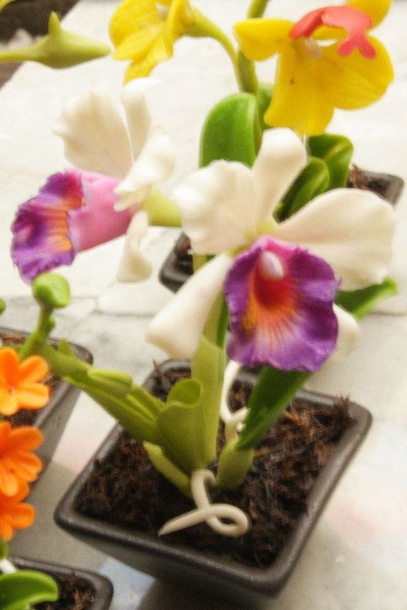 Miniature Polymer Clay Flowers Supplies Orchids, White Cattleya with purple lip 1 pcs