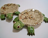 Little Turtle Holders