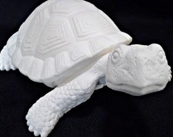 DIY Ceramic Turtle