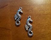 Four cute silvery sea horses