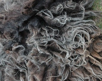 smoke grey, charcoal raw Navajo-Churro wool