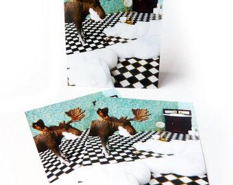 set of 3 postcards -no foam, no glory-