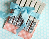 Silver Glitter Sparkle Clothespins Set of 6