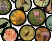 Vintage Viewfinder Images - 1 Inch Circles - Digital Collage Sheet 963 - Printable Download - Buy 3 Get 1 FREE