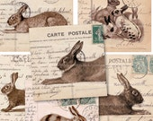 Vintage Bunnies and Rabbits on Postcards - 2.5 Inch Squares - Printable Download - Digital Collage Sheet 2071