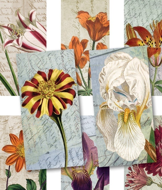 Domino Tiles 1 x 2 - Antique Florals 3 - Digital Collage Sheet 543 - Instant Download