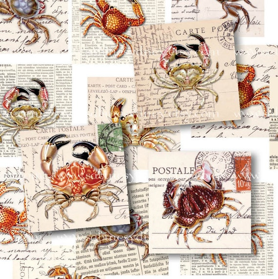 Crabs on Newspaper and Postcards - 1 Inch Squares - Digital Collage Sheet 296 - Printable Download