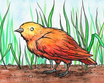 "SALE: Little Bird watercolour and ink painting, 6.5"" x 9.5"" original by Eden Bachelder. Matting included."