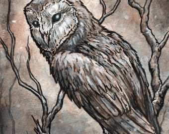 Winter Owl, Signed and matted print of original watercolour painting by Eden Bachelder, ready to frame.