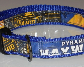 Dog Collar from Recycled Pyramid Haywire Hef Beer Labels