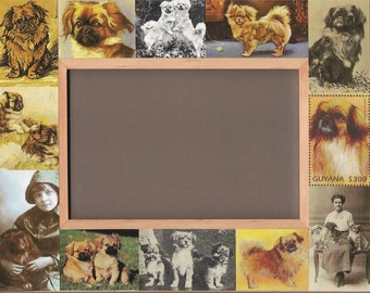 TIBETAN SPANIEL / Dog Picture Frame / Vintage Art / Unusual Gifts - Photos