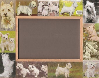 Westie / West Highland White Terrier / Dog Picture Frame / Photo / Vintage Art / Unusual Gifts - 2