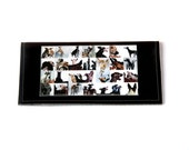 greyhounds photo checkbook cover - faux leather in black
