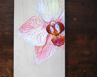 A Shy Orchid - Original Oil Painting