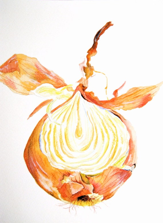 Onion Peeled - Original Watercolor Painting