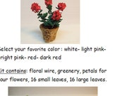 miniature geranium  Kit and instructions