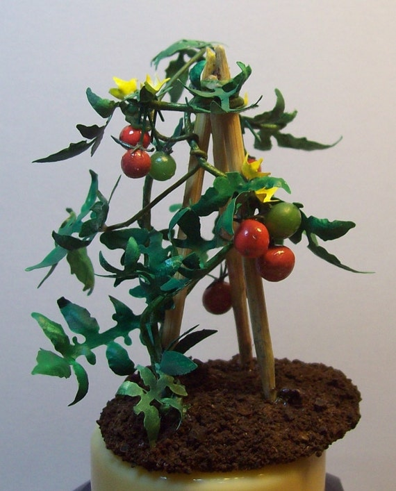 miniature tomato 1/12 scale, vibrant colour in your garden