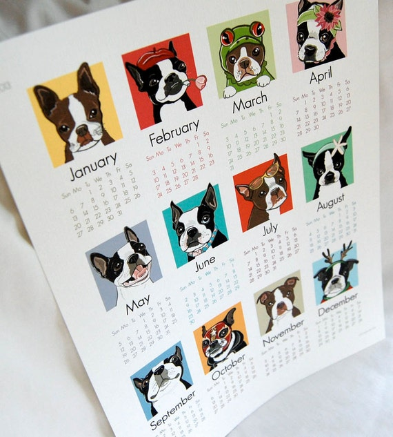 2013 Boston Terrier Calendar Print - Eco-Friendly 8x10 Size
