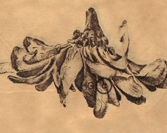 8 Note Cards blank on the inside flowers nudes etching intaglio
