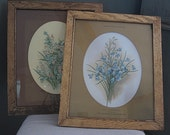 antique railroad botanical prints