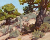 Hill with Piñons - Original Oil Landscape Plein Air Painting