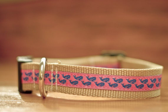 Blue Whales on Pink Dog Collar
