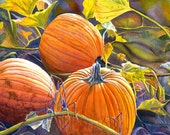 Pumpkins Art Watercolor print of an original painting by Cathy Hillegas, 11x14, autumn, orange, yellow, green, brown, purple, blue, gilcee