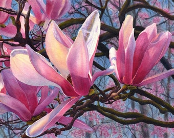 Pink magnolia art watercolor painting print by Cathy HIllegas, 8x10, watercolor print, floral, pink, red, blue, purple, brown,Spring Diva