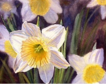 White Daffodils Watercolor Painting Print  by Cathy Hillegas, 11x14, watercolor print, floral, spring flowers, yellow, blue, purple, green