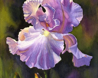 Purple Iris Art Watercolor Painting Print by Cathy Hillegas, 11x14 floral print, watercolor iris, watercolor print, purple yellow blue green