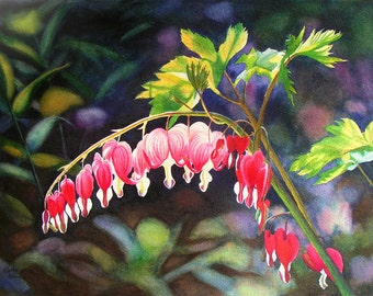 Bleeding Heart watercolor painting print by Cathy Hillegas, 8x10, watercolor flowers, watercolor print, hearts, red pink, green, blue, brown