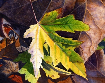 Yellow Leaf Art Watercolor Painting Print by Cathy Hillegas, 8x10,watercolor print,  autumn leaves, yellow, gold, green, brown, purple, blue