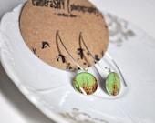 CITRUS. Eclipse dangle earrings. (Sterling Silver)