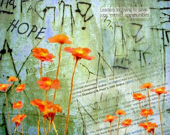 Digital Collage Print, Hope for a New Beginning, Orange Cosmos, Wall Graffiti