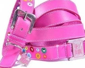 Loki Puppy Leather Dog Collar and Leash Set - Punk Pink