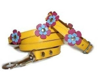 Cool Yellow Flowers Leather Dog Collar and Leash Set