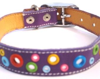 Loki Puppy Leather Dog Collar - Punk Purple