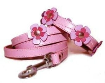 Pink Flowers Leather Dog Collar and Leash Set