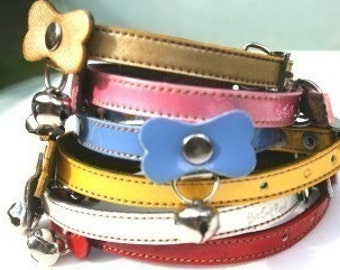Jelly Cool Colorful Dog Collar