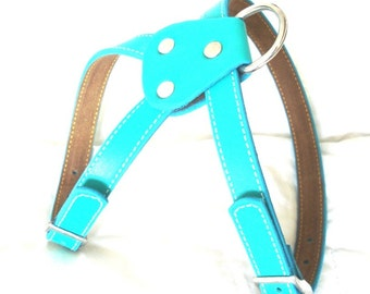 Cool Turquoise Leather Dog Harness
