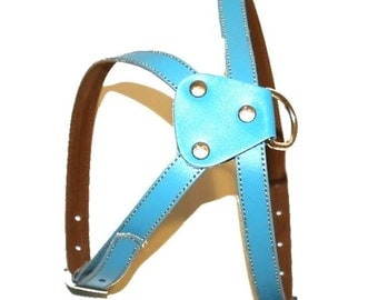 Light Blue  Leather Dog Harness