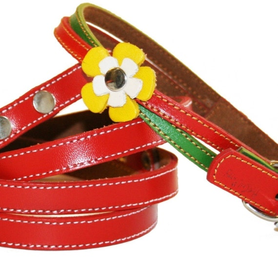 Rasta Swirls Leather Dog Collar and Leash Set