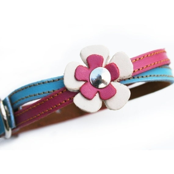 Swirl Leather Dog Collar in Blue and Hot Pink