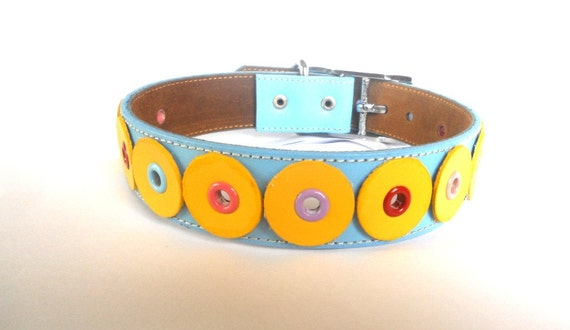 Leather Dog Collar in Sky Blue and Yellow