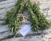 "RESERVED Fresh Organic  ROSEMARY Bundles / 40 fragrant 8""sprigs / Delicious / Fresh Cut / Wedding Favors / Wedding Invitations and Settings"
