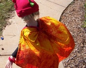 Reserved Listing for Two Dragon Costumes and a Tiger Insulated Lunch Sack  (Canadian Shipping)