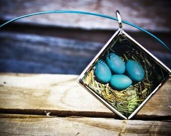 Robin's Egg Pendant w\/ Neckwire