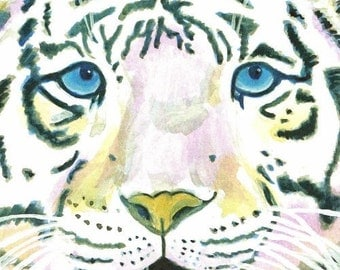 Tiger art / white tiger painting / wildlife print / big cat / blue eyes / reproduction / 8 x 10 / P126