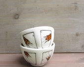 Two small cockroach bowls, insect ice cream bowl gift for him, entomologist, rustic woodland Father's day gift